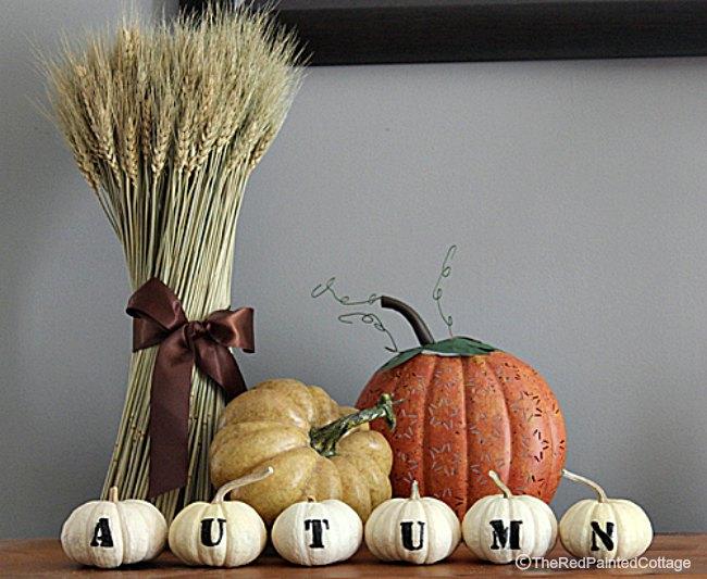 autumn-lettered-pumpkins