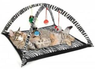 cat toys activity center kittens play mat
