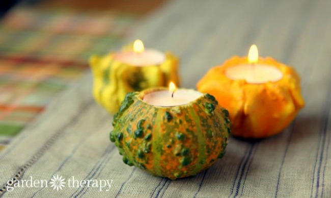 ornamental-gourds-candle-holders