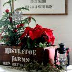Mistletoe Christmas Crate & Cat on the Naughty List
