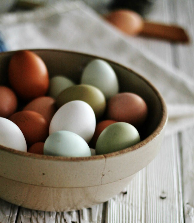 country-living-fresh-eggs-backyard-chicken-flock-knick-of-time