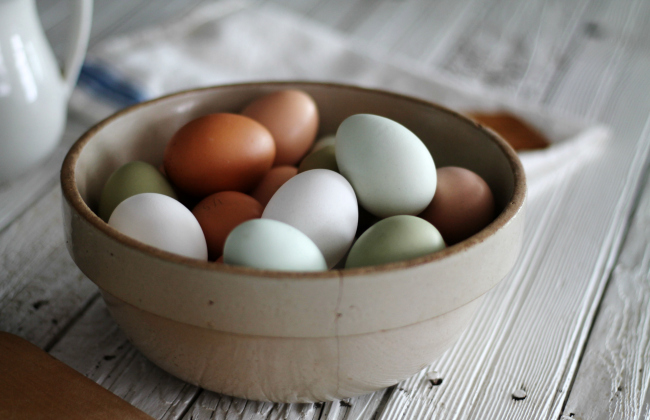 Farm fresh eggs from our backyard chickens | knickoftime.net