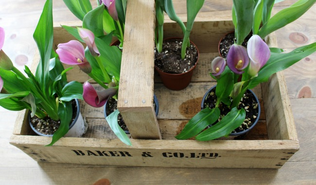 How to turn pallet wood into a farmhouse wooden trug | www.knickoftime.net