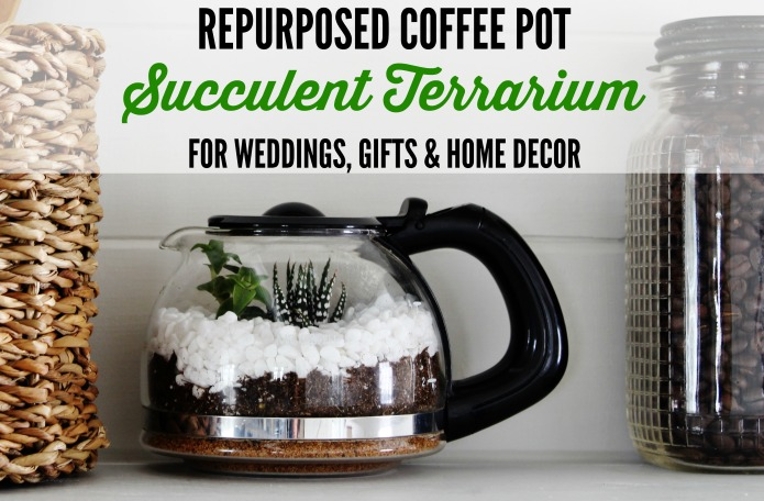 How to make a miniature succulent terrarium garden to give as an inexpensive gift or use as home or wedding decor   www.knickoftime.net