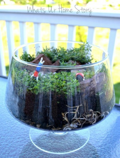Repurposed Trifle Bowl Miniature Garden | 15 Creative Repurposed Flower and Planter Ideas featured at Knick of Time | www.knickoftime.net