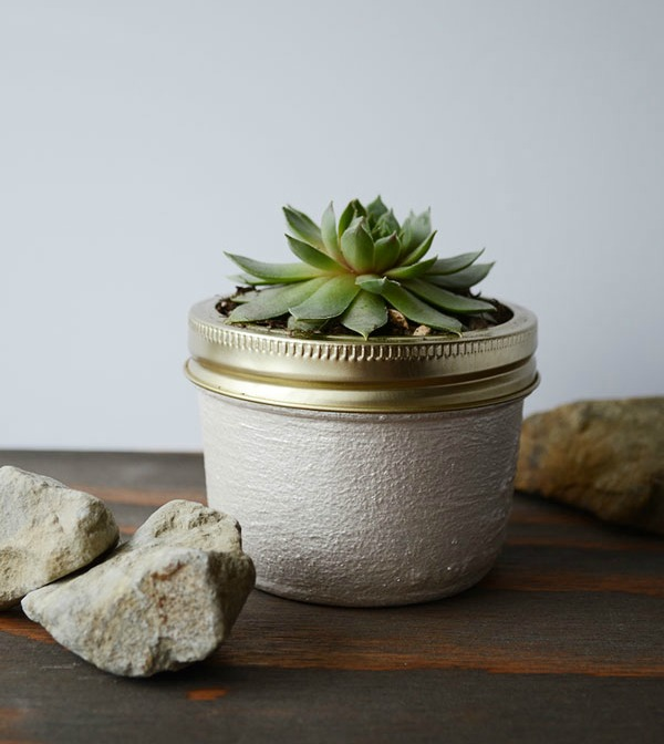Mini Mason Jar Succulent Planter |15 Creative Repurposed and Upcycled Planter Ideas featured at Knick of Time | www.knickoftime.net