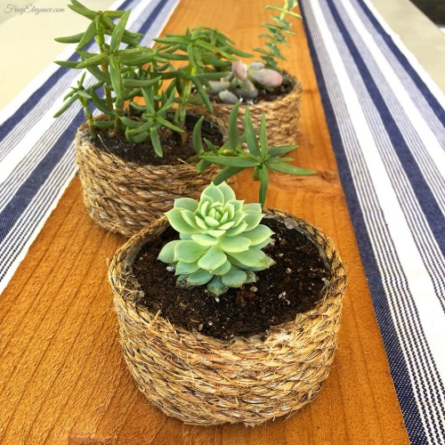 Rope Wrapped Tin Can Planters | 15 Creative Repurposed and Upcycled Planter Ideas featured at Knick of Time | www.knickoftime.net