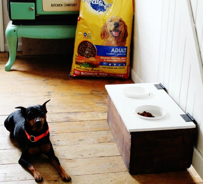 Dog Treats Storage with Leash Hanger Tutorial | www.knickoftime.net