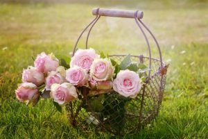 The first grass mowing of the season is cause for celebration with some pink roses in a vintage wire basket! | www.knickoftime.net