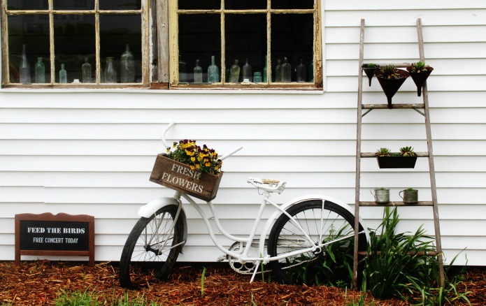 Vintage Bicycle Garden Art and DIY Vertical Succulent Ladder Planter with Vintage Kitchen Bread Pans, Funnels and Tin Cups | www.knickoftime.net