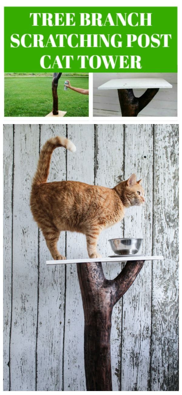 How to make a tree branch scratching post cat climbing tower | www.knickoftime.net