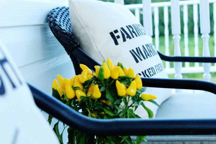 Ornamental peppers on farmhouse covered porch | www.knickoftime.net