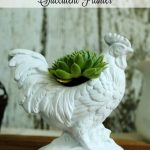 A Tale of Two Roosters | Quick & Easy Thrift Store Upcycled Succulent Planter
