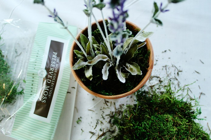 Using preserved moss in faux lavender flower planter by Knick of Time | www.knickoftime.net