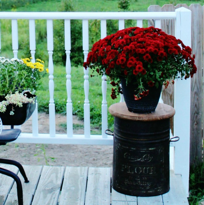 Fall porch decor with mums on a repurposed antique flour bin accent table | www.knickoftime.net