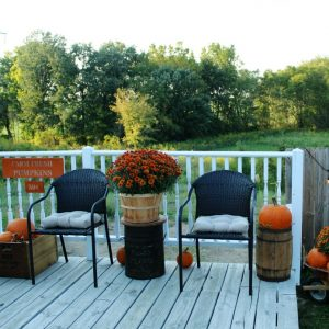 Fall Pumpkin Patch Porch with painted sign | www.knickoftime.net