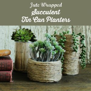 Jute cord wrapped Tin Can Succulent Planters | www.knickoftime.net