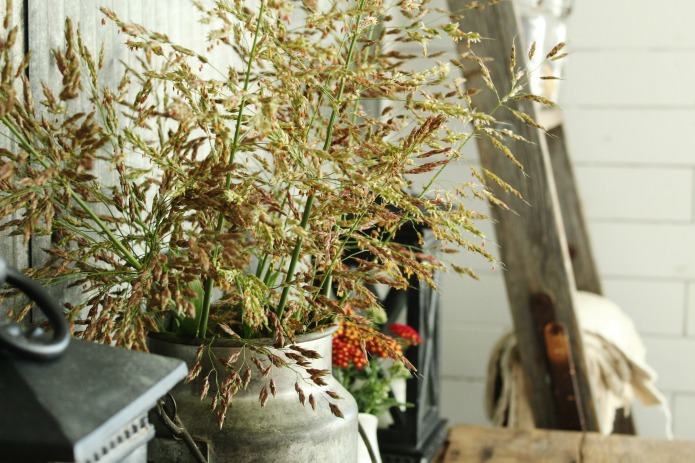 Decorating with Natural Elements for Fall | www.knickoftime.net