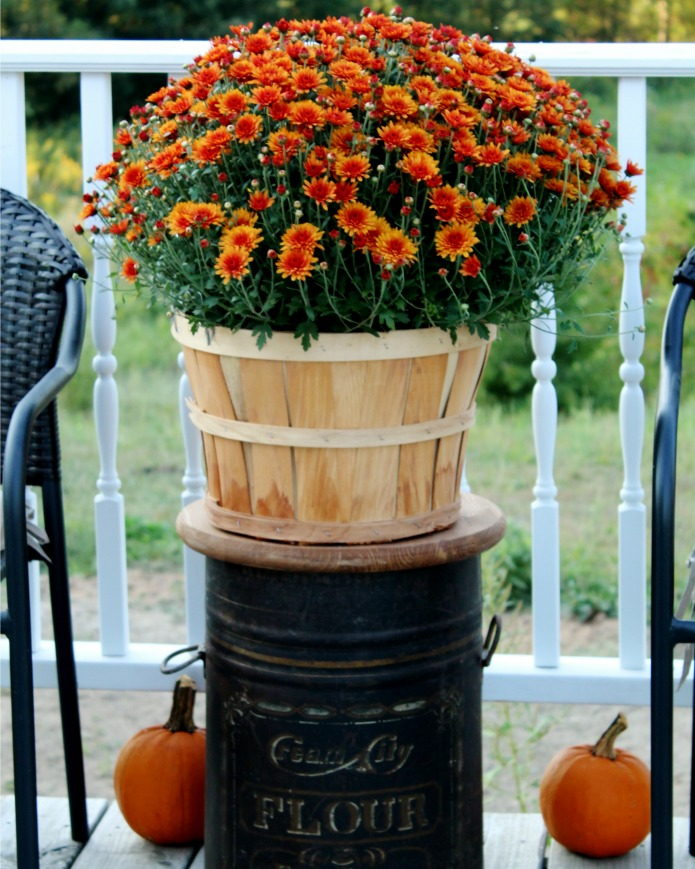 Antique Flour Bin Table Fall Porch Decorating Ideas | www.knickoftime.net