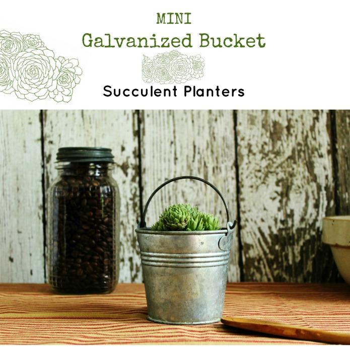 Farmhouse decor miniature galvanized bucket succulent Planters | www.knickoftime.net