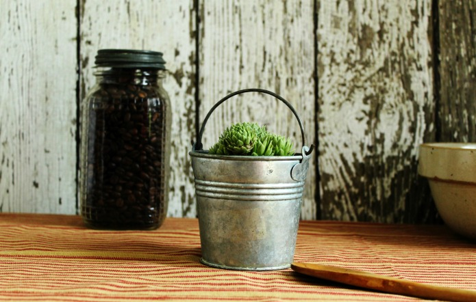Miniature galvanized bucket succulent planters | www.knickoftime.net