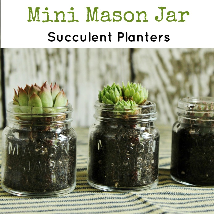 Repurposed Mini Mason Jar Succulent Planters | www.knickoftime.net