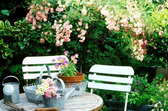 My Plans for a  Secret Garden Patio in Unused Yard Space | www.knickoftime.net