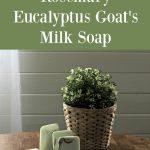 Fresh Rosemary Eucalyptus Goat's Milk Soap