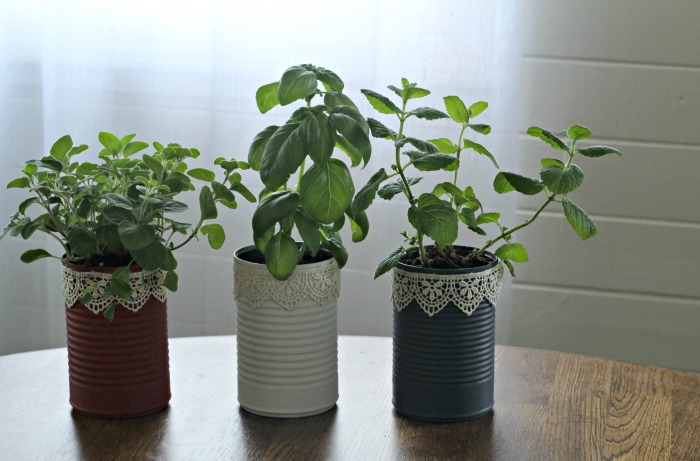 Make some Patriotic Tin Can Kitchen Herb Planters! A easy repurpose craft that looks beautiful! #KnickofTime #patriotic #repurposed #tincans #herbs #planters | www.knickoftime.net