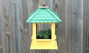DIY Gazebo Succulent Hanging Planter