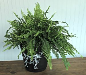 Cow Screen Print Upcycled Farmhouse Style Planter