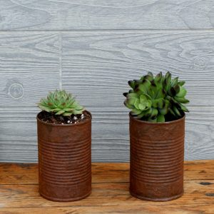 DIY Rusted Tin Cans Succulent Planters