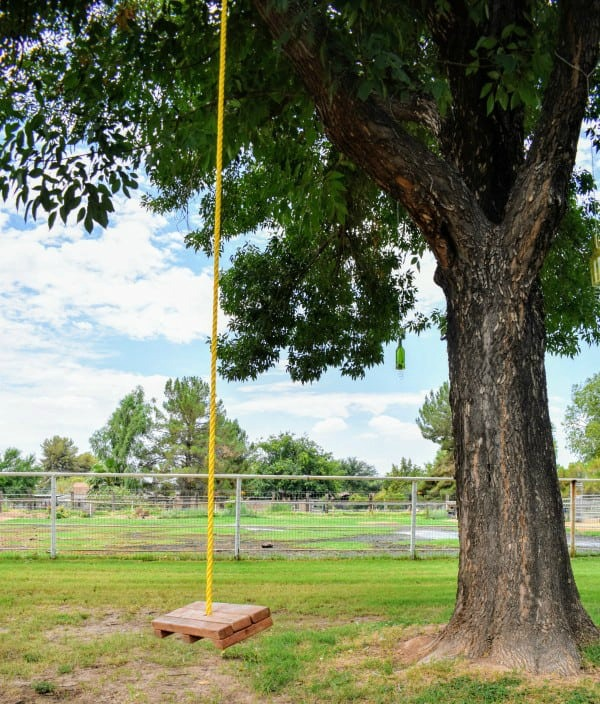 DIY One Rope Tree Swing