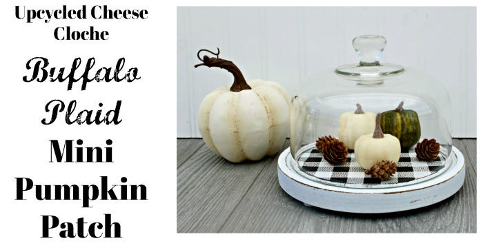 Cheese Cloche Repurposed Into Fall Craft Mini Pumpkin Patch by Knick of Time | www.knickoftime.net
