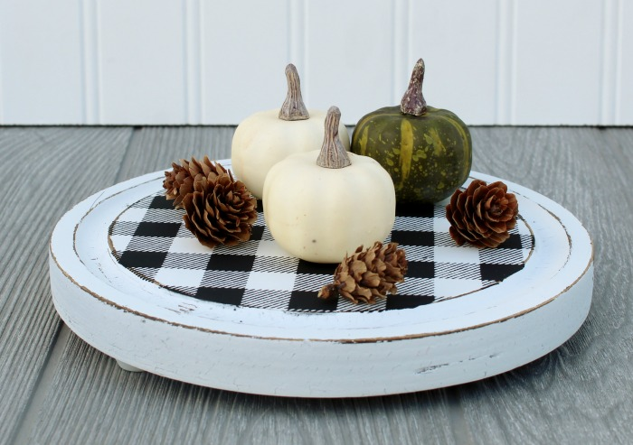 Tiny Pumpkin Patch in Cheese Cloche Tray by Knick of Time