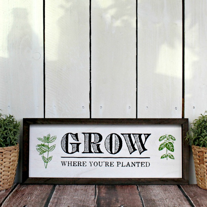 Chalk Couture Grow Where You're Planted Box Frame Sign